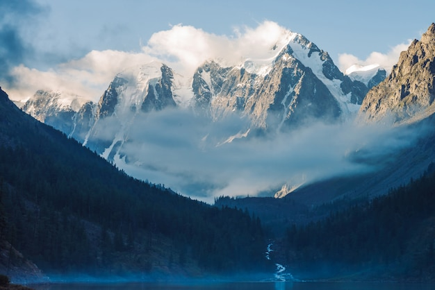 早朝の山の湖の近くの幽霊のような森。
