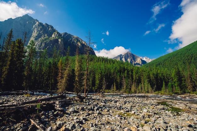 森林の端に沿って流れます。針葉樹林の丘の後ろに雪で岩が多い尾根。