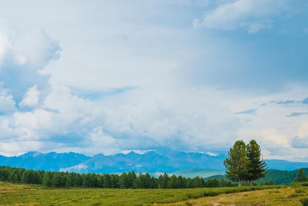 Захватывающий вид на горные пейзажи.