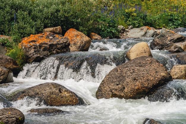 Большие валуны в горном ручье крупным планом. пороги реки с копией пространства. быстрый поток воды вдоль красивой растительности. быстрый поток возле мокрых камней. фон чистых волн. богатая флора высокогорья.
