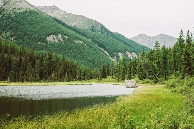 Большой камень в небольшом горном озере с блестящей поверхностью среди богатой растительности на фоне прекрасных гигантских гор. скала в воде. удивительный атмосферный ландшафт величественной природы высокогорья.