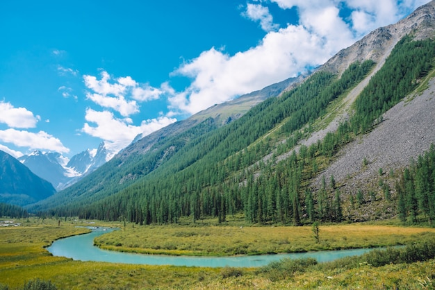 Серпантин в долине перед красивым ледником. снежные скалы за горами с хвойным лесом. огромные облака на гигантской снежной вершине горы под голубым небом. атмосферный ландшафт горной природы.