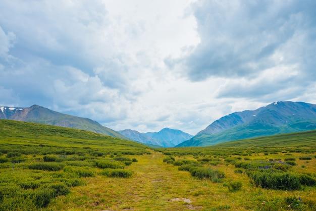 遠くの巨大な山々の壮観な眺め。高地の谷の小道。ハイキングパス。曇り空の下の素晴らしい巨大な山脈。雄大な自然の驚くべき劇的な緑の風景。
