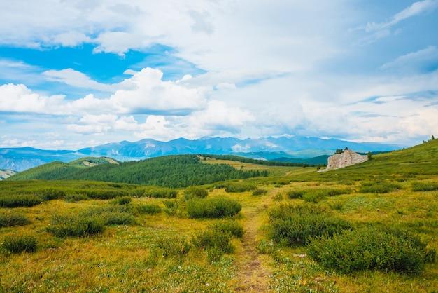 壮観な山の景色。高地の岩石の近くの歩道のある風景。木と植物のある岩。曇り空の下の遠い巨大な山々。素晴らしい風光明媚な山の風景。