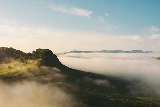 濃い霧の上の森と山のピーク。日光の高地で霧。美しい雄大な自然の大気の風景。