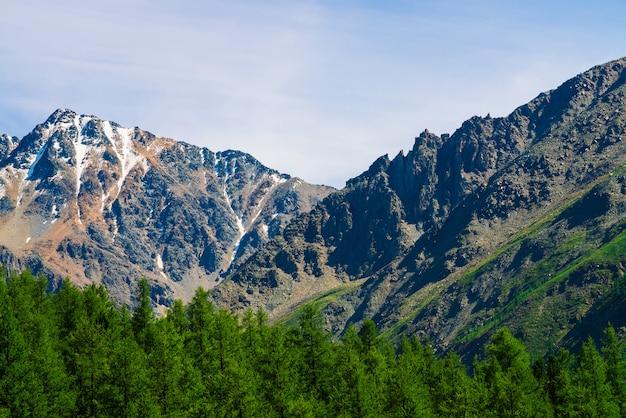 青く澄んだ空の下で樹木が茂った丘の後ろに雪の山頂。針葉樹林の上の岩の尾根。雄大な自然の大気のミニマルな風景。