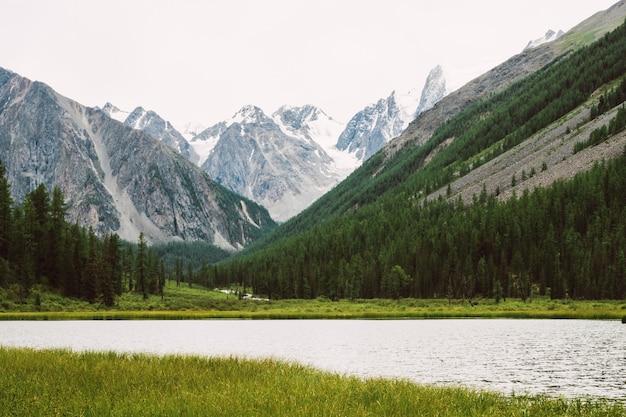 Прекрасные снежные горы за небольшим горным озером с блестящей водой среди богатой растительности. ручей вытекает из ледника. белый чистый снег на хребте. удивительный атмосферный ландшафт высокогорной природы.