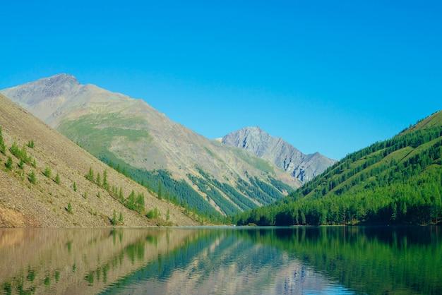 Гигантские горы отражены в чистой воде горного озера в солнечном свете. лес хвои на горных склонах под голубым небом в солнечном дне. удивительный яркий горный ландшафт величественной природы высокогорья.