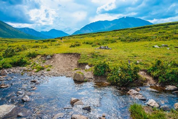 渓谷のマウンテンクリークを抜けて遠くの素晴らしい巨大な山々への小道。ハイキングパス。高地の豊かな植物。水の流れの近くのカラフルな植生。雄大な自然の素晴らしい日当たりの良い風景。