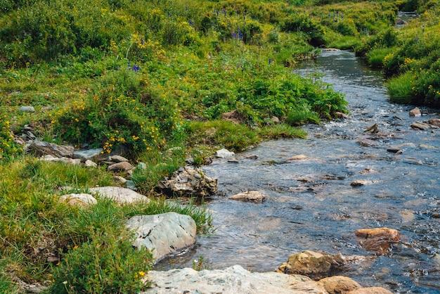 晴れた日の緑の谷の春の水の流れ。
