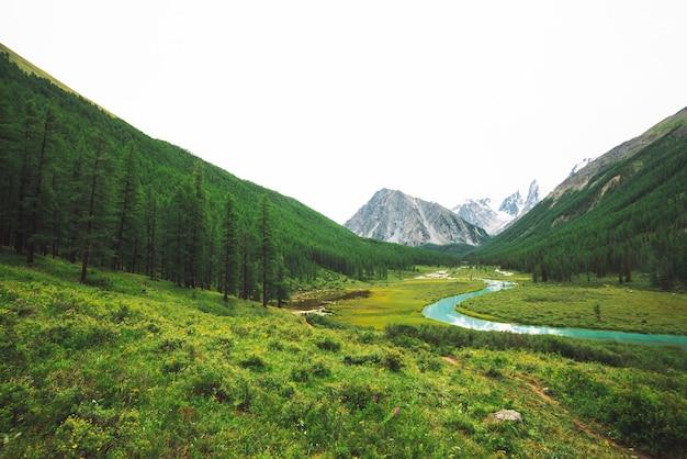 Горная река змеиной формы в долине и снежных горах
