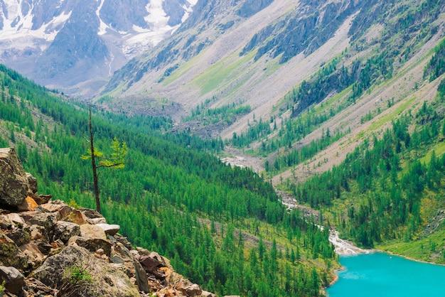 針葉樹林と青い川の素晴らしい山
