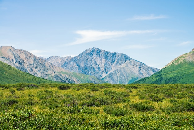 澄んだ青い空の下で緑の谷の上の巨大な山々。