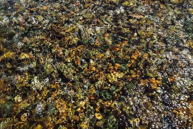 Разноцветная детальная текстура каменистого дна прозрачного ручья заделывают.