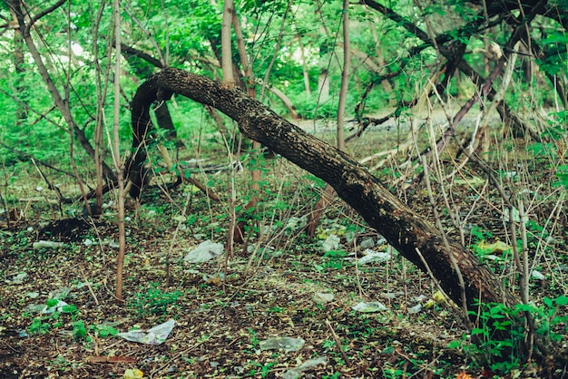 Куча мусора в лесу среди растений. токсичный пластик проникает в природу повсюду.