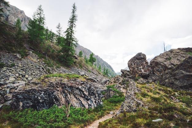 どんよりした天気の岩の道と素晴らしい山の風景。