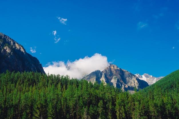 晴れた日の巨大な岩。針葉樹林に覆われた丘の後ろに雪で岩が多い尾根。