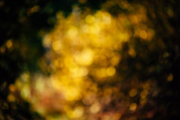 緑豊かな多彩な群葉のぼやけた質感。日没の多重自然秋背景。日の出のぼやけた自然秋の背景。多色ボケ。ゴールデンアワーの黄色オレンジ緑秋のパレット。