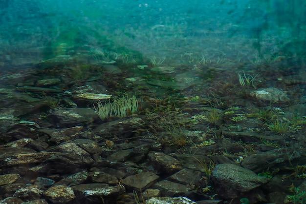 きれいな水のクローズアップと山の湖の底の岩と植物。山は滑らかな水面に反映されます。
