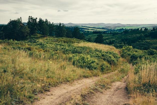 未舗装の道路と曇り空の下で山に向かって劇的な緑の風景。