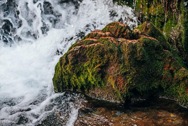 Красивый зеленый мшистый утес в изображении головы дракона в быстрой воде горного ручья крупным планом. пейзаж с мхами на камне в водопаде. удивительный пейзаж с валуном в дикой речке.