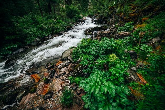 Атмосферный зеленый лесной пейзаж с горным ручьем в скалистой долине. красивая загадочная тайга с дикой рекой. яркие пейзажи лесной свежести. богатая зелень на замшелых скалах вдоль горной реки.