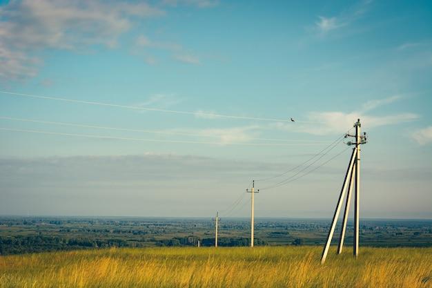 電力線は緑と黄色のフィールドを通過します。青い空の下のフィールドの電気柱。空の高圧線。