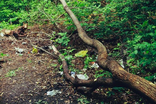 植物の間の森のゴミ山。どこでも自然に有毒プラスチック。植生に囲まれた公園のゴミの山。汚染された土壌。環境汚染。生態学的な問題。ゴミをどこかに捨てます。