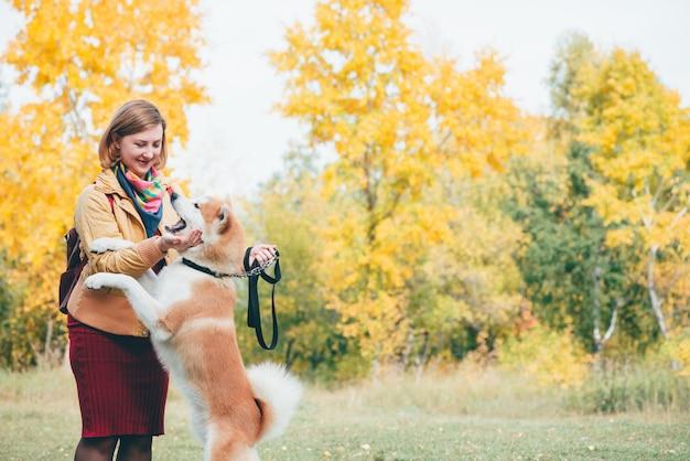 新鮮な空気の公園でハスキーな白い生姜犬と遊ぶ女の子。女性と屋外でかわいいフォクシー犬の肖像画を感じています。秋の色で女の子と遊ぶ美しい赤いハスキー犬。飼い主と一緒にペットを歩く