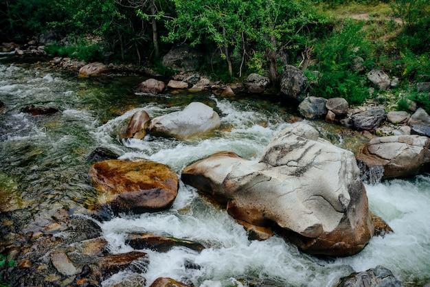 Зеленая вода в горном ручье среди дикой флоры.