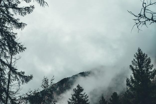 岩の間の低い雲。