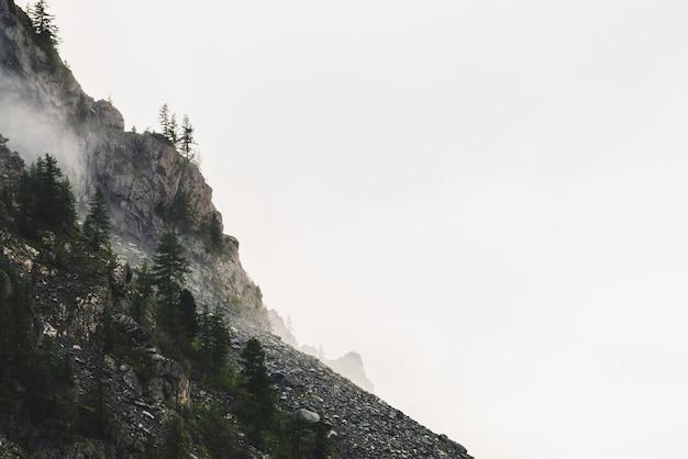 曇り空の大きな崖。
