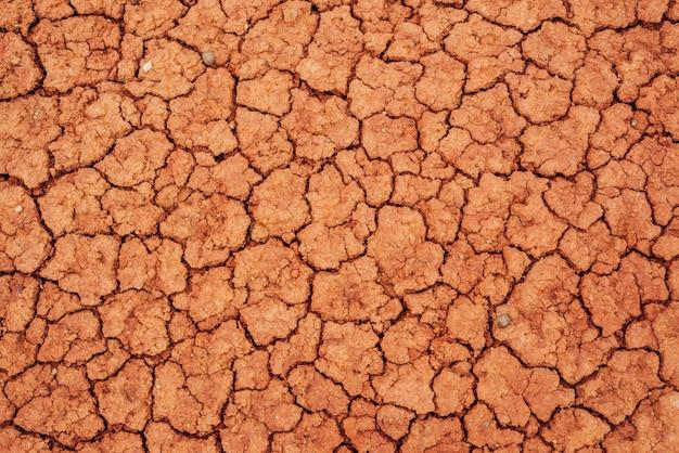 Сухая потрескавшаяся почва.