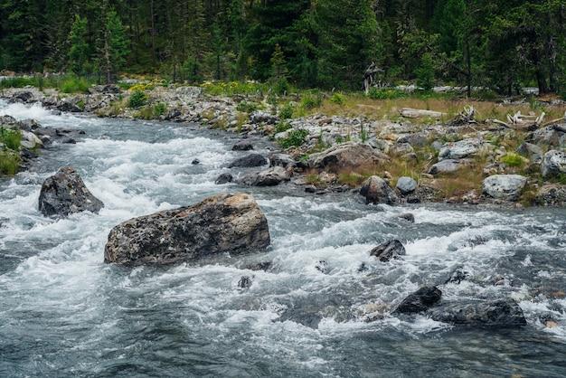 山の川の石。