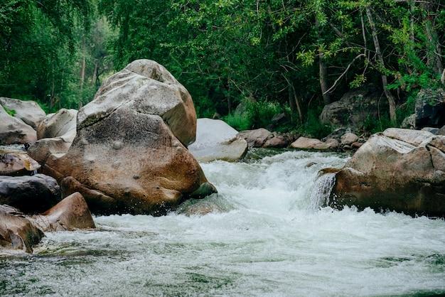 Горный ручей с зеленой водой среди пышных зарослей в лесу.