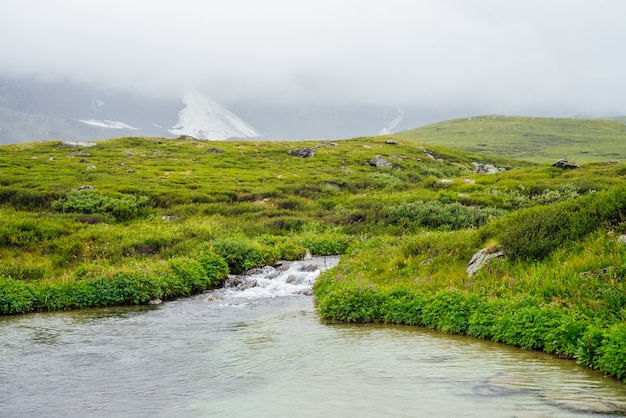 Яркий зеленый альпийский пейзаж с горным ручьем и озером среди богатой растительности и горами среди низких облаков.
