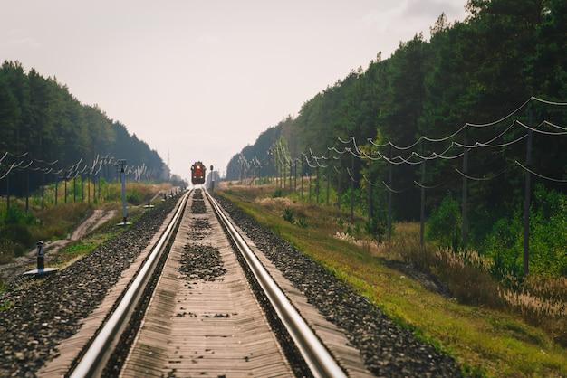 Мистический поезд едет по лесу вдоль леса. мосферный пейзаж.