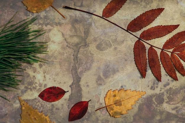 Яркий осенний гербарий на металлическом фоне поврежден коррозией.