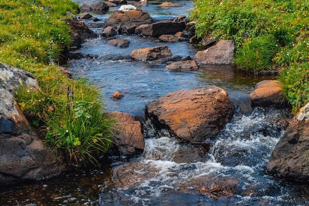 晴れた日の緑の谷の春の水の流れ