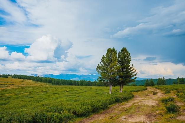 Захватывающий вид на горные пейзажи
