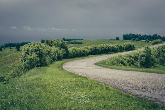 曇り空の下で山に向かってアスファルト道路と劇的な緑の風景。