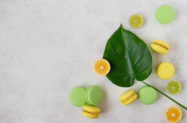 カラフルなマカロン、レモンとライムのスライス、白いコンクリートの表面に緑の葉