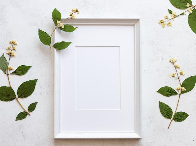 フレームとドライフラワー、コンクリートの白い背景の標本。花柄のデザイン。平置き
