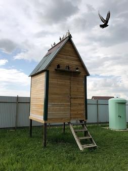 屋根の上に座っているハトと木製の鳩の家。ハトが鳩小屋から飛びます。田舎での古典的な鳩の繁殖。