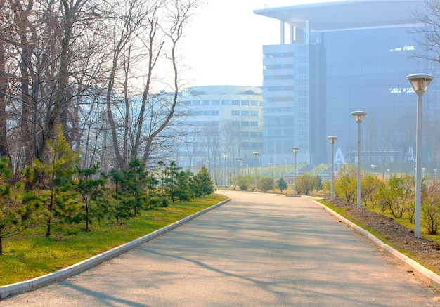 Извилистая пешеходная дорожка через парк на дальневосточном федеральном университете в осенний день