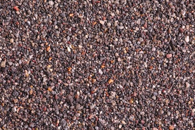 黒砂ビーチのマクロ写真
