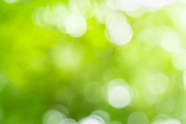 抽象的な緑は、美しいボケ味を持つ背景をぼかし。