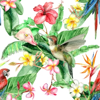 熱帯の鳥の水彩パターン