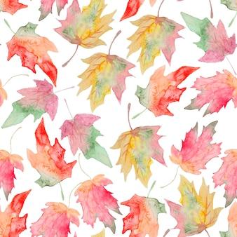 水彩カエデ秋の葉のシームレスパターン