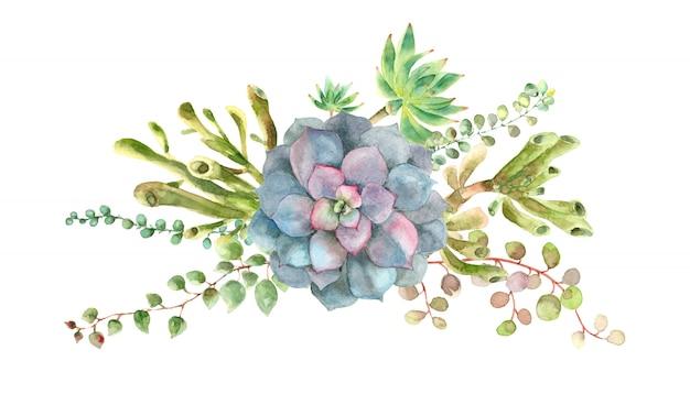 水彩多肉植物の花束